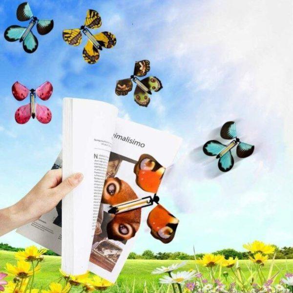 Screenshot 5 fe306837 8c4a 4758 a6e4 d5f46a871171 Papillons Magiques (Lot De 6)