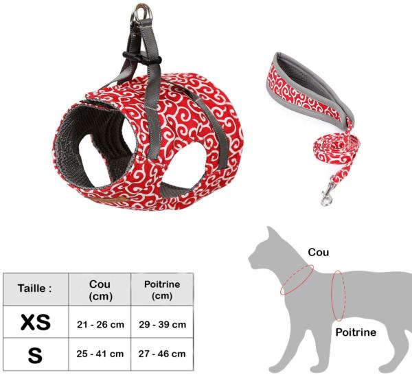 TAILLE Nouveau : Le Meilleur Moyen De Protéger Votre Chat Lorsque Vous Sortez