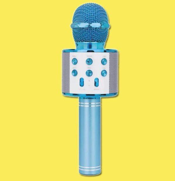 Micro Karaoké Sans Fil - Fonction Bluetooth Raton Malin Bleu