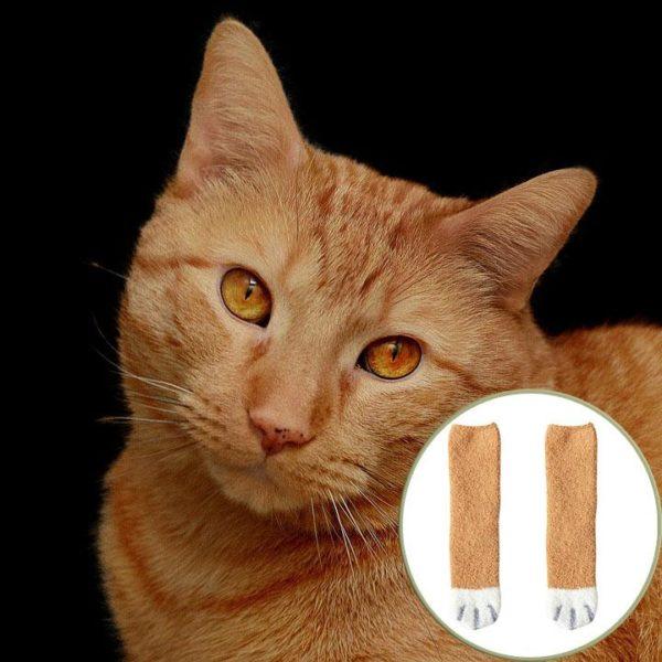 chat orange 1 Chaussettes D'hiver Pattes De Chats