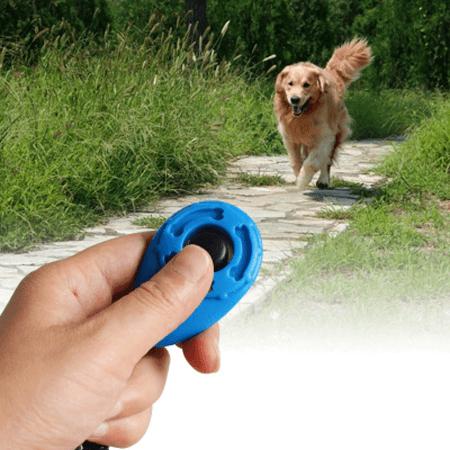 clic pour chien Clicker Chien, Le Meilleur Outil Pour Éduquer Son Chien