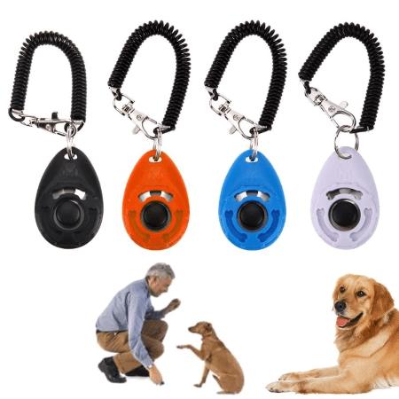 clicker dressage chien Clicker Chien, Le Meilleur Outil Pour Éduquer Son Chien