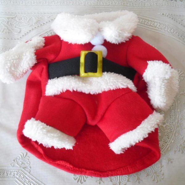 deguisementpourchatnoel Déguisement De Noël Pour Chats Et Chiens