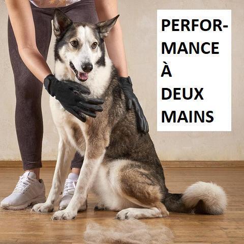 gant6 large 93994b07 6e6a 4729 9744 194cfcc9362c Paire De Gants De Toilettage Hirundo Pour Chats, Chiens Et Chevaux