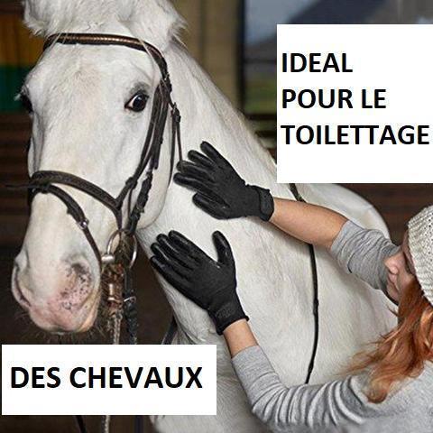 gant7 large 2b177302 57e3 4c87 99fb 19c883f6299a Paire De Gants De Toilettage Hirundo Pour Chats, Chiens Et Chevaux