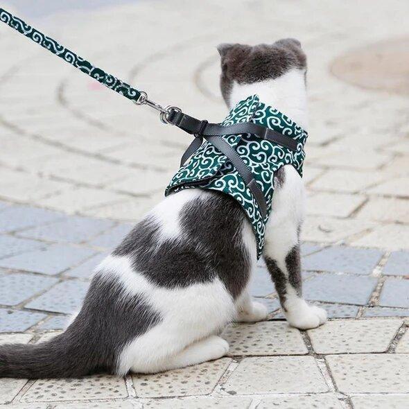 harnaischat Nouveau : Le Meilleur Moyen De Protéger Votre Chat Lorsque Vous Sortez