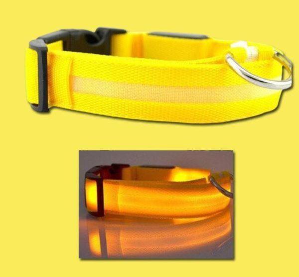 Collier Lumineux Pour Chien Flash Ventes Jaune XL