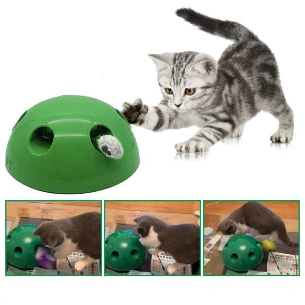 jouet pour chat interactif Jouet Chat Interactif, La Meilleure Façon D'occuper Votre Chat!