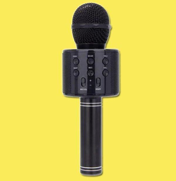 Micro Karaoké Sans Fil - Fonction Bluetooth Raton Malin Noir