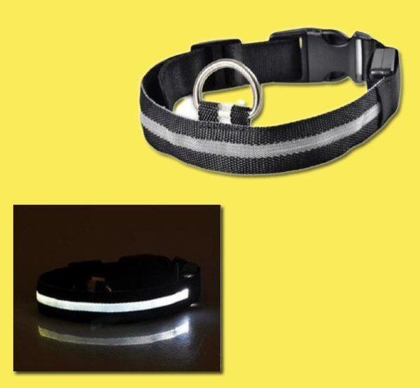 Collier Lumineux Pour Chien Flash Ventes Noir L