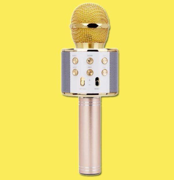 Micro Karaoké Sans Fil - Fonction Bluetooth Raton Malin Doré