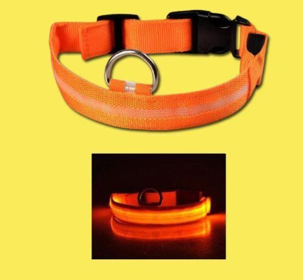 Collier Lumineux Pour Chien Flash Ventes Orange XS