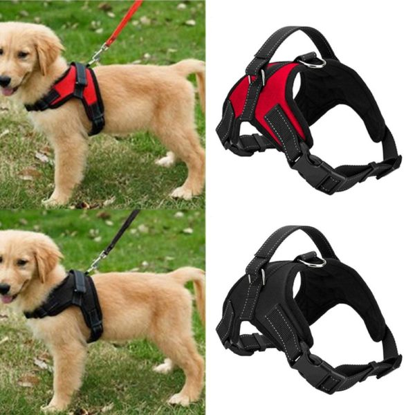 product image 1115401042 Harnais Easy-Clip Pour Chien | Animal Protect®