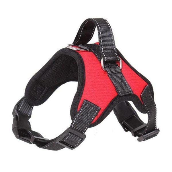 product image 1158650854 2de28664 3cc4 444a a586 c8600f6c2bf5 Harnais Easy-Clip Pour Chien | Animal Protect®