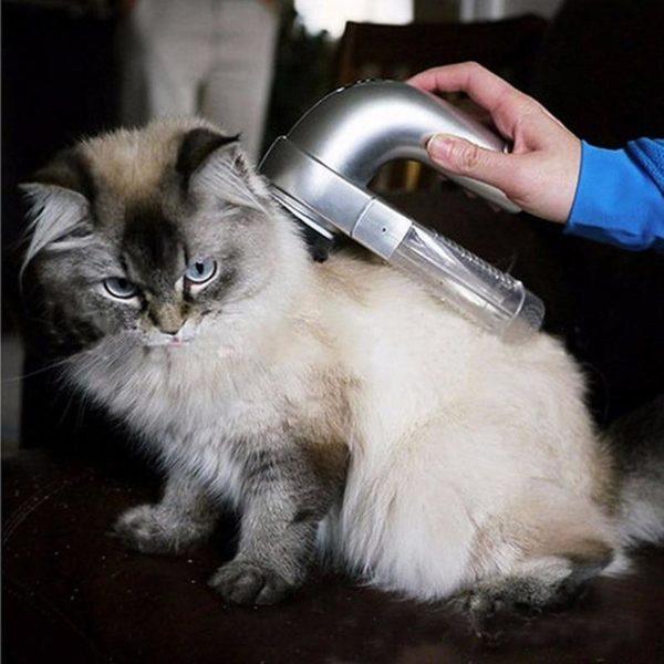 product image 298617326 Aspirateur Portable Silencieux Pour Poils D'animaux Animal Protect®