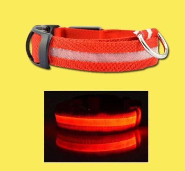 Collier Lumineux Pour Chien Flash Ventes Rouge L