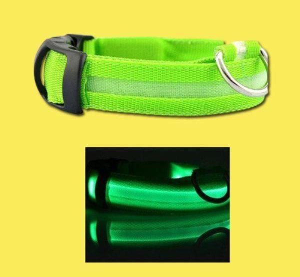 Collier Lumineux Pour Chien Flash Ventes Vert XL