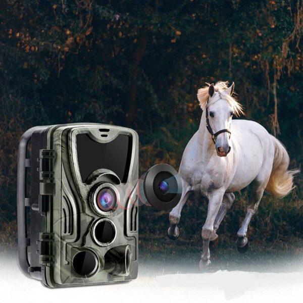 Camera Chasse : Obtenez Des Photos et Vidéos Directement Sur Votre Portable - 16MP