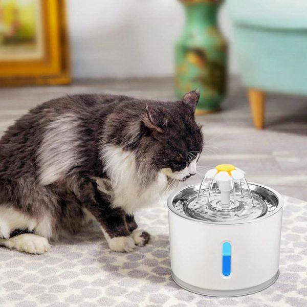 AutomatischerKatzenwasserbrunnen 2 Fontaine À Eau Pour Chat: Faites La Promotion Du Comportement D'alcool De Votre Chat!