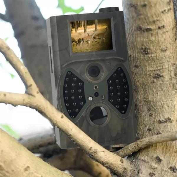 Camera Chasse : Obtenez Des Photos et Vidéos Directement Sur Votre Portable - 12MP