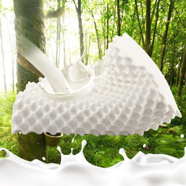 Noempi cement oreiller orthop dique Latex naturel Lit oreiller ergonomique doux pour le cou des cervicales Oreiller De Lit Orthopédique: Soulage Les Douleurs Du Dos Et Du Cou