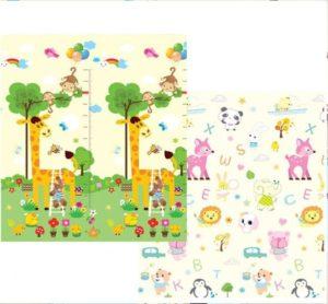 Girafe et Animaux