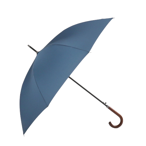 Parapluie homme de couleur bleu