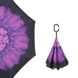 Parapluie femme Violet