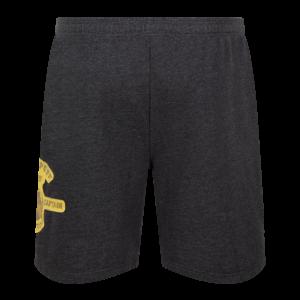 Harry Potter Shorts