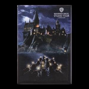 Objet Collection Harry Potter