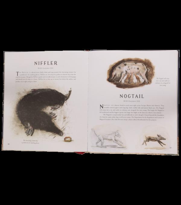 Fantastic Beasts Illustrated 004 Boutique harry potter Edition illustrée Les animaux fantastiques et où les trouver
