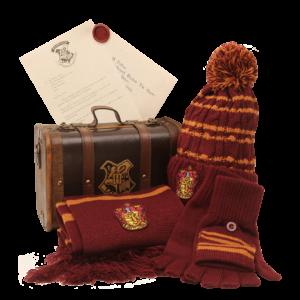 Malle de Rangement Harry Potter