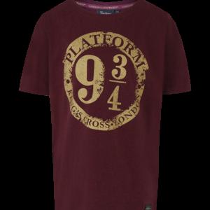 Tee Shirt Harry Potter Garçons