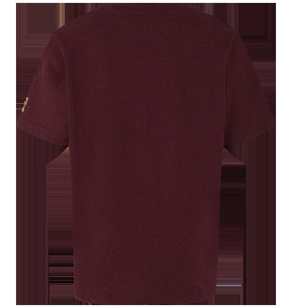 PL00010099 6 Boutique harry potter Tee Shirt Harry Potter Garçons