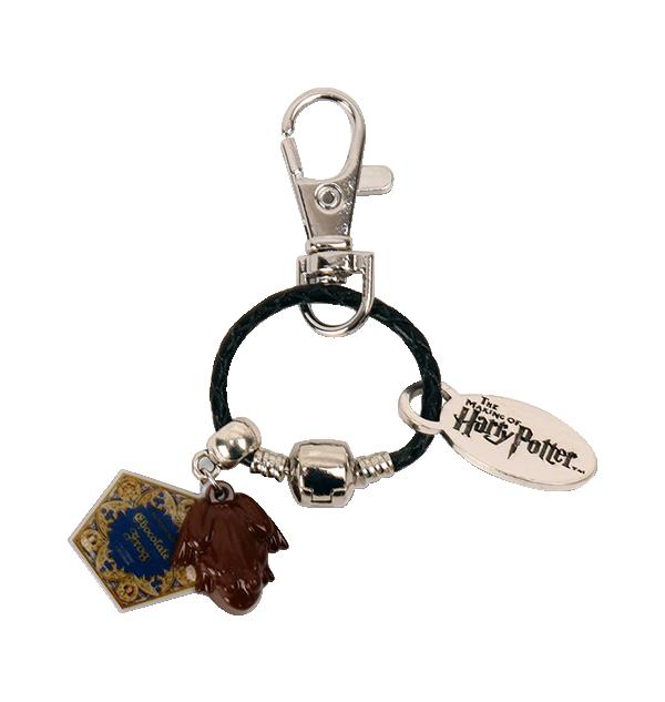 SliderCharm2 Boutique harry potter Chocolat Harry Potter