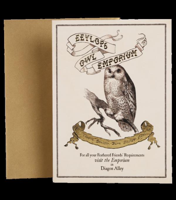 Carte postale Eeylops Owl Emporium