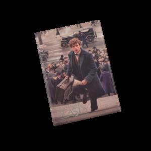 Objet Collector Harry Potter
