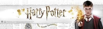 img2 Boutique harry potter Aujourd'hui On vous parle du Shopping dans le monde magique de Harry Potter au sein de la galerie commerciale du Village Joué club.