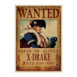 poster one piece x-drake