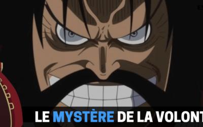 One Piece : La Volonté du D