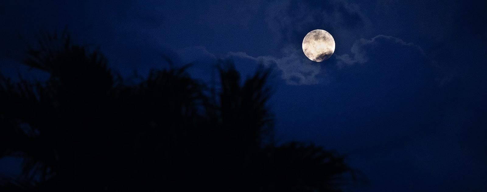 pleine lune de loup garou