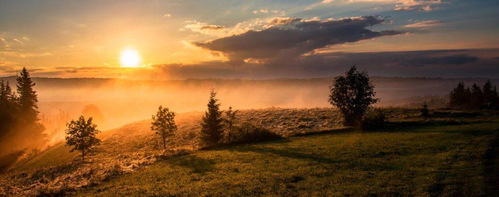 Paysage de plaine lumineux