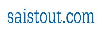 Logo de Saistout - Maximisez votre potentiel de revenus en ligne