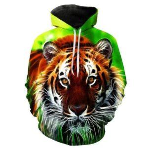 Sweat tigre curieux