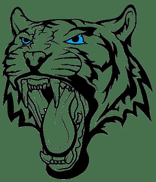 tête t-shirt tigre
