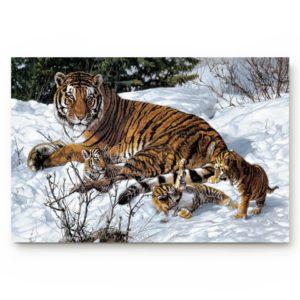 Tapis Tigres Des Neiges