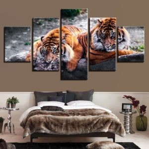 tableau tigre jumeaux fauves