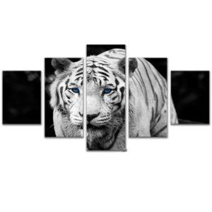 tableau tigre Blanc Yeux Bleus