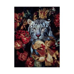 poster tigre Blanc Jardin