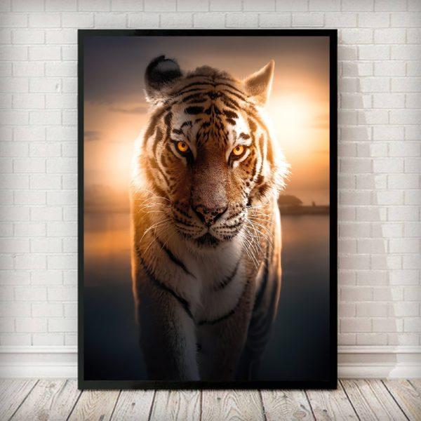 poster tigre Coucher Soleil